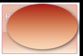 Ovaal 80x51 mm