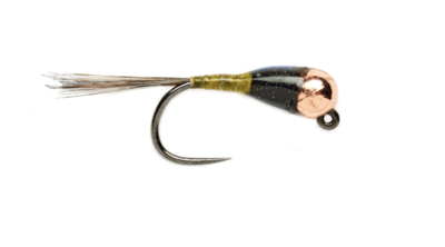 Spanish Bullet Olive Barbless