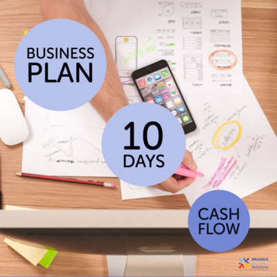 Write a business plan and cash flow for startups