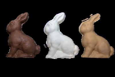 Solid Bunny