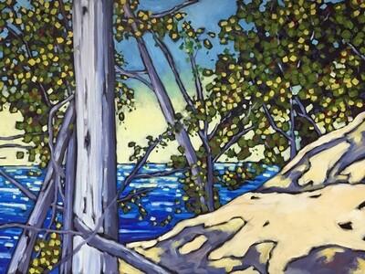 Lake Michigan Dune Series