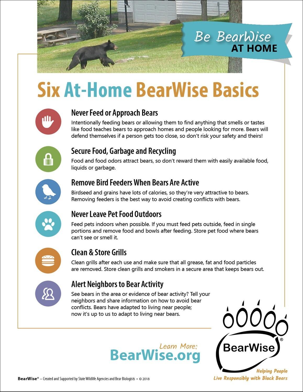 Six At-Home BearWise Basics (PDF file)