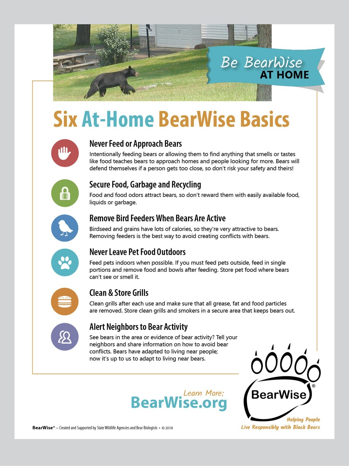 Six At-Home BearWise Basics