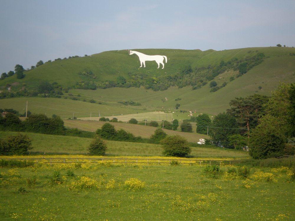 White Horse of Westbury