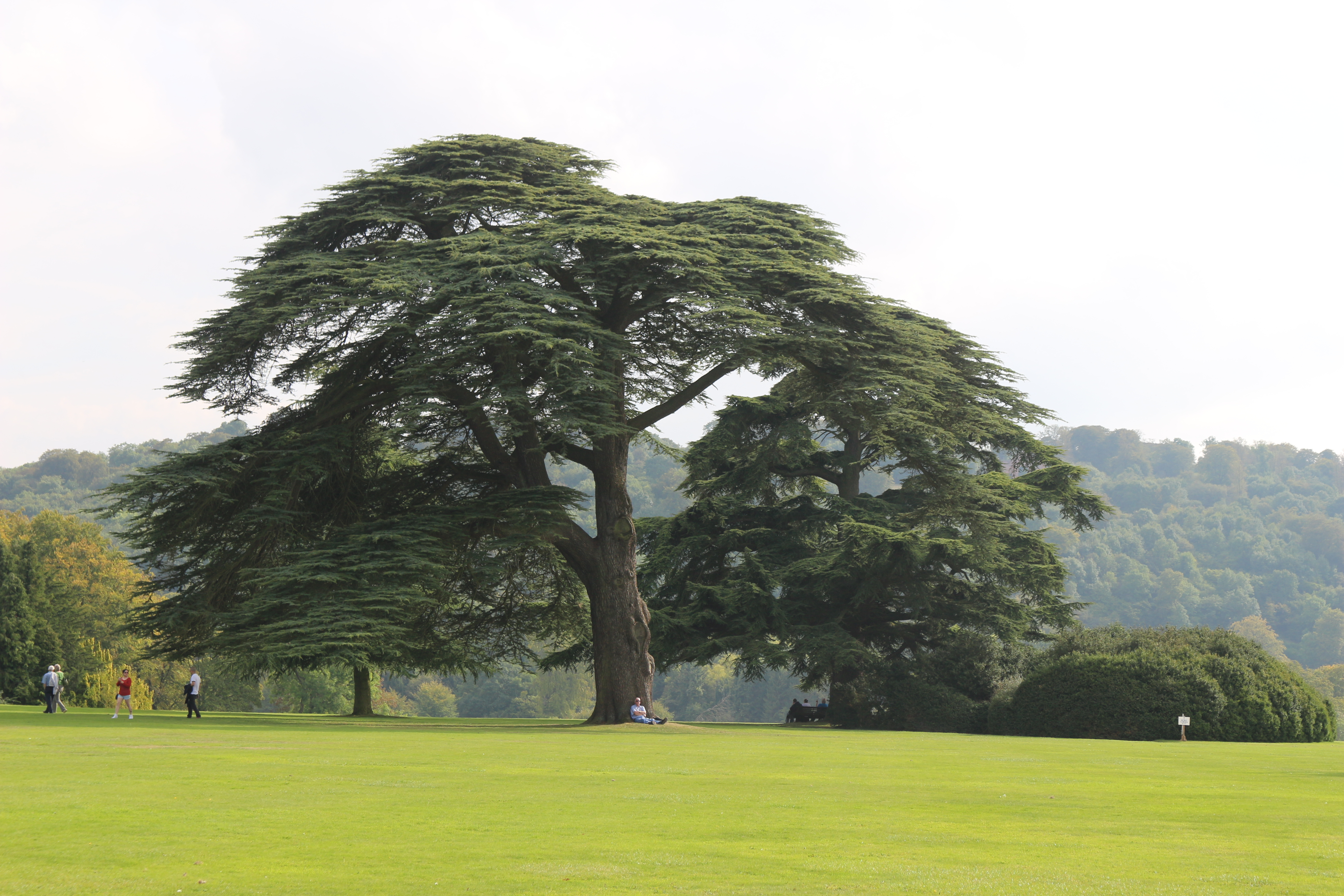 Grounds of Highclere