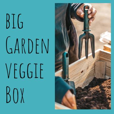 Big Garden Veggie Box