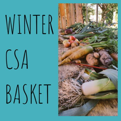 Winter CSA Basket