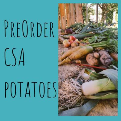 CSA Potatoes (Pre-Order)