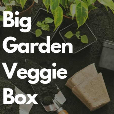 Big Garden Veggie Collection