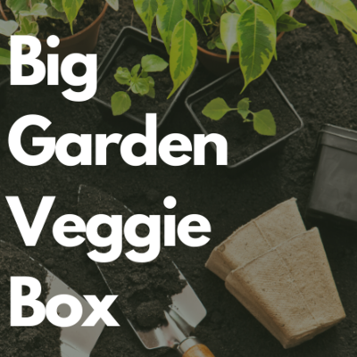 Big Garden Veggie Collection - Grow Your Own Garden