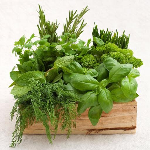 DIY Herb Planter Kit
