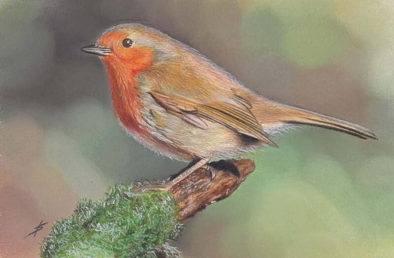 Mr Robin Original