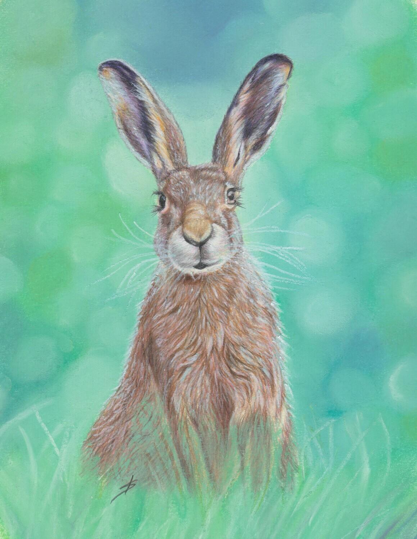 Mr Hare Original
