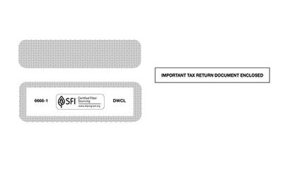 Standard W-2 Envelope #6666-1 (Set of 100)