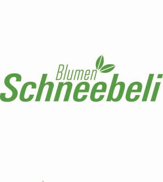 Online Shop Blumen Schneebeli AG