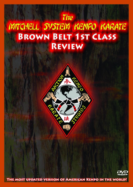 Mitchell Kenpo: 1st Class Brown Belt Review