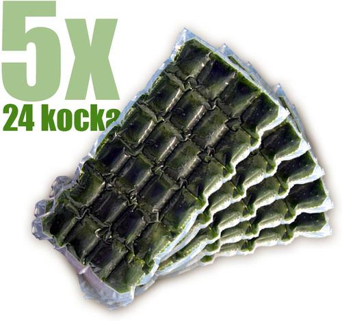 Gyorsfagyasztott bio búzafűlé 5x24 kocka
