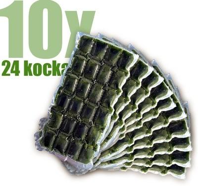 Gyorsfagyasztott bio búzafűlé 10x24 kocka