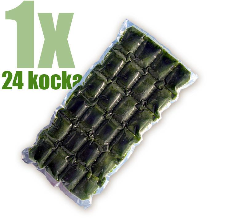 Gyorsfagyasztott bio búzafűlé 24 kocka