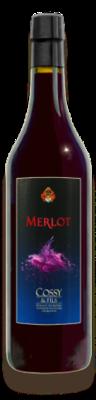 Saint-Saphorin Grand Cru Merlot 2 ans de barrique 2016 70 cl