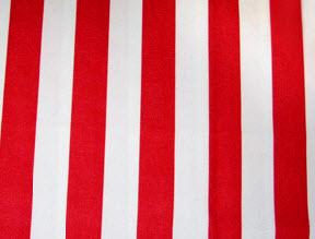 Awning Stripe Fabric Swatch 00205
