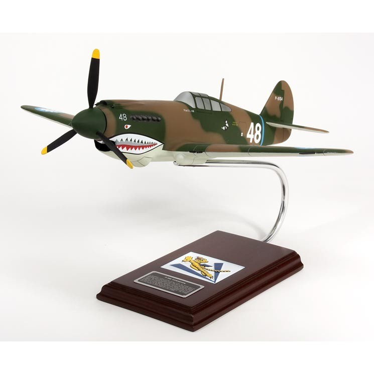 P-40E Warhawk 1/24 Model Airplane