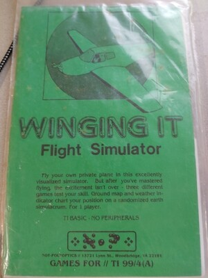 Winging It Flight Simulator