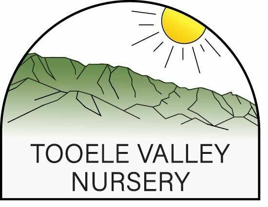 Tooele Valley Nursery