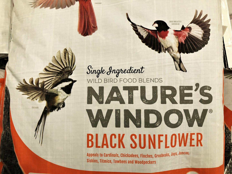 Nature's Window Black Oil Sunflower Seed