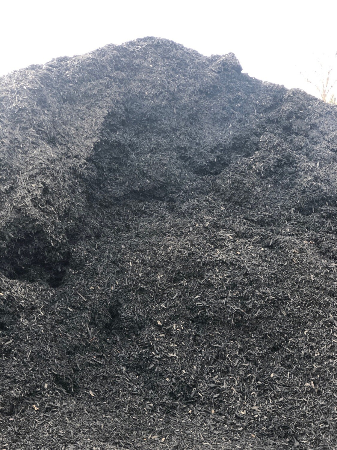 Black Midnight Mulch (per yard)