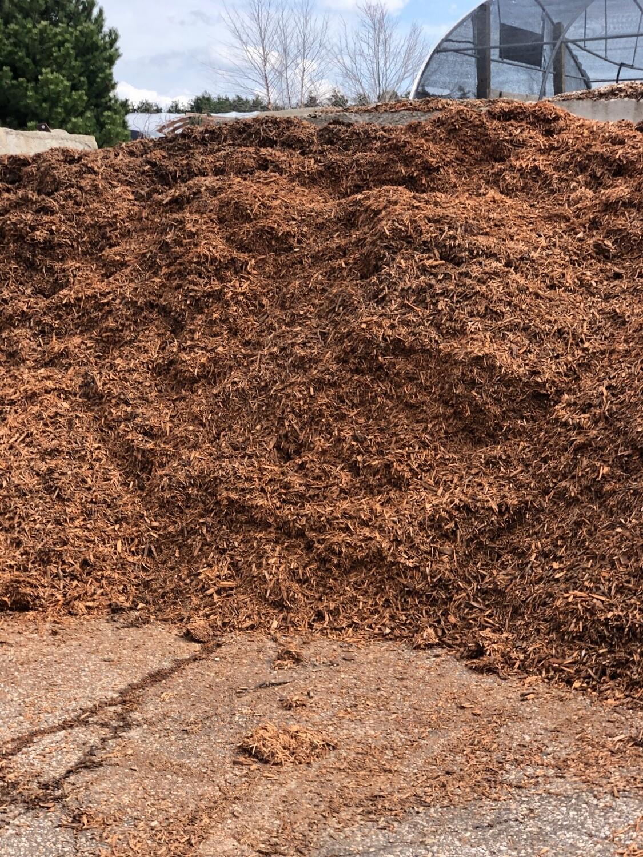 Gold Sunset Mulch (per yard)