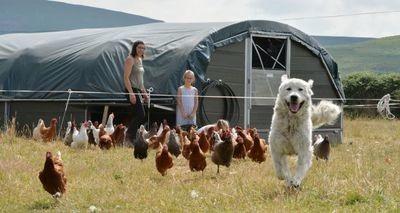 Family Farm Bus