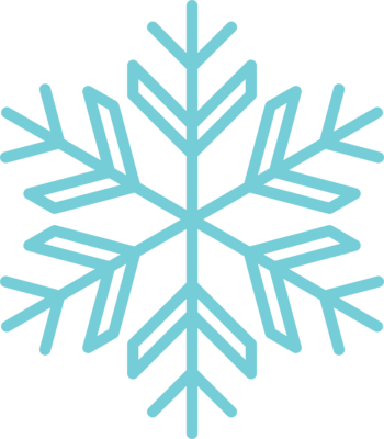 Snowflake 13