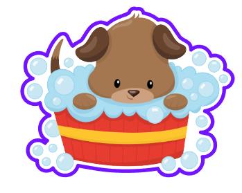 Puppy 04