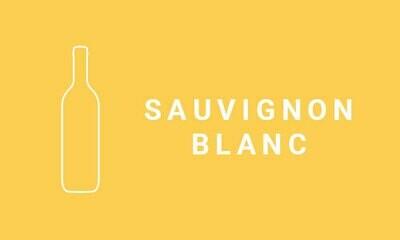 2019 NOVA VITA Sauv Blanc