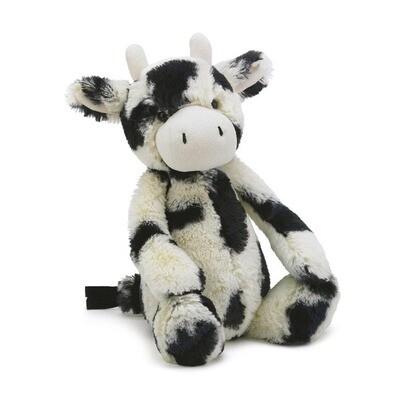JC Medium bashful calf