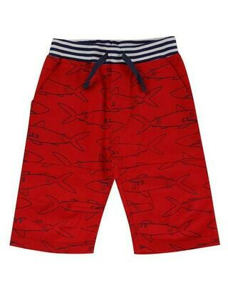 Lilly & Sid Red Shark Shorts