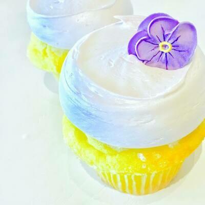 Baby Lemon Lavender