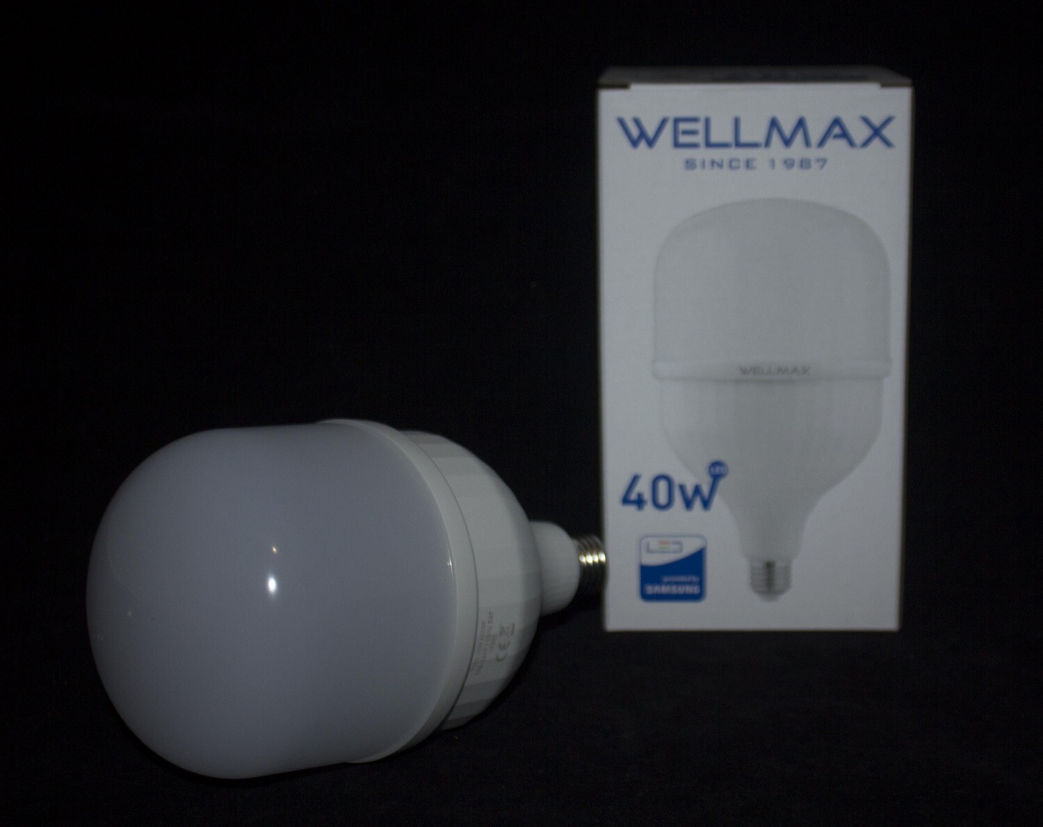 Էլ.լամպ LED Wellmax  40W (E27 6500K)