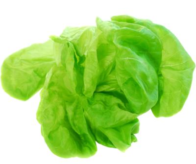 Lettuce Alive Bags