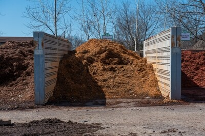 BULK - Bright Gold Mulch