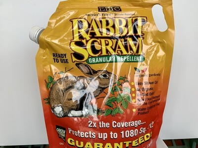 Rabbit Scram - 1,080sqft