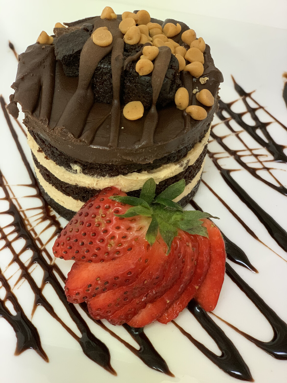 Chocolate Peanut Butter Explosion Mousse Cake