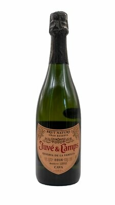 Juve y Camps Cava (sparkling white wine)