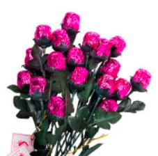 Madelaine - Chocolate Rose, pink