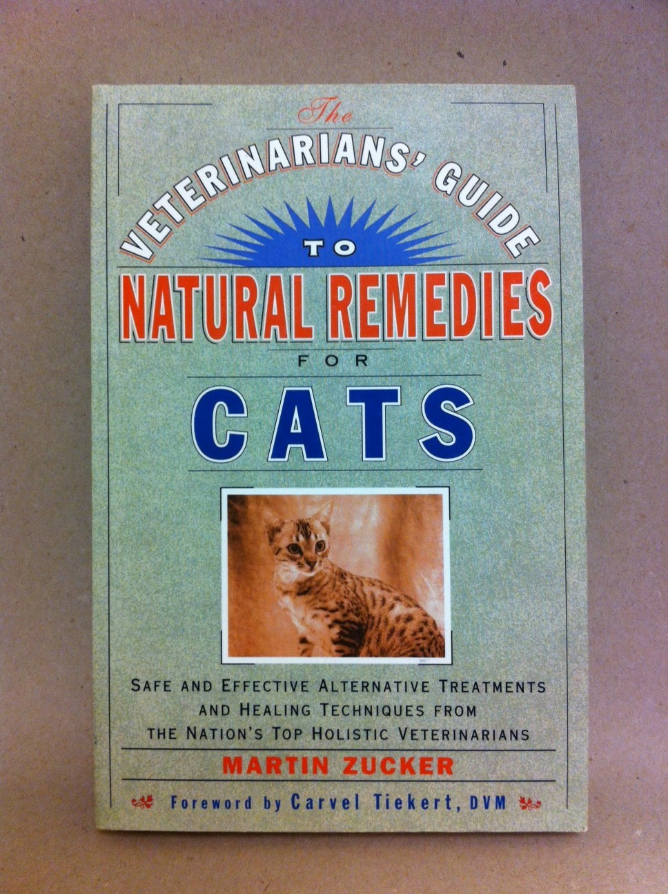 A Veterinarian's Guide to Natural Remedies for Cats T4094