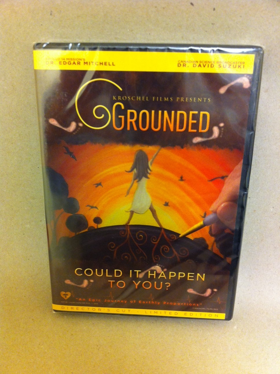 Grounded  Could It Happen To You?  DVD 2375