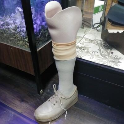 Right Prosthetic Leg W/ Tan Shoe