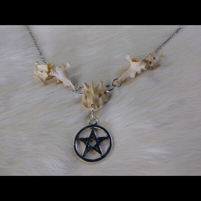 Vertabrae & Pentacle Necklace