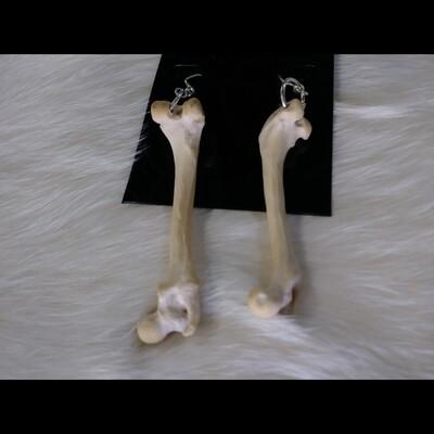 Single Bone Earrings